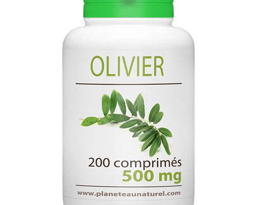 compléments de feuilles d'olivier
